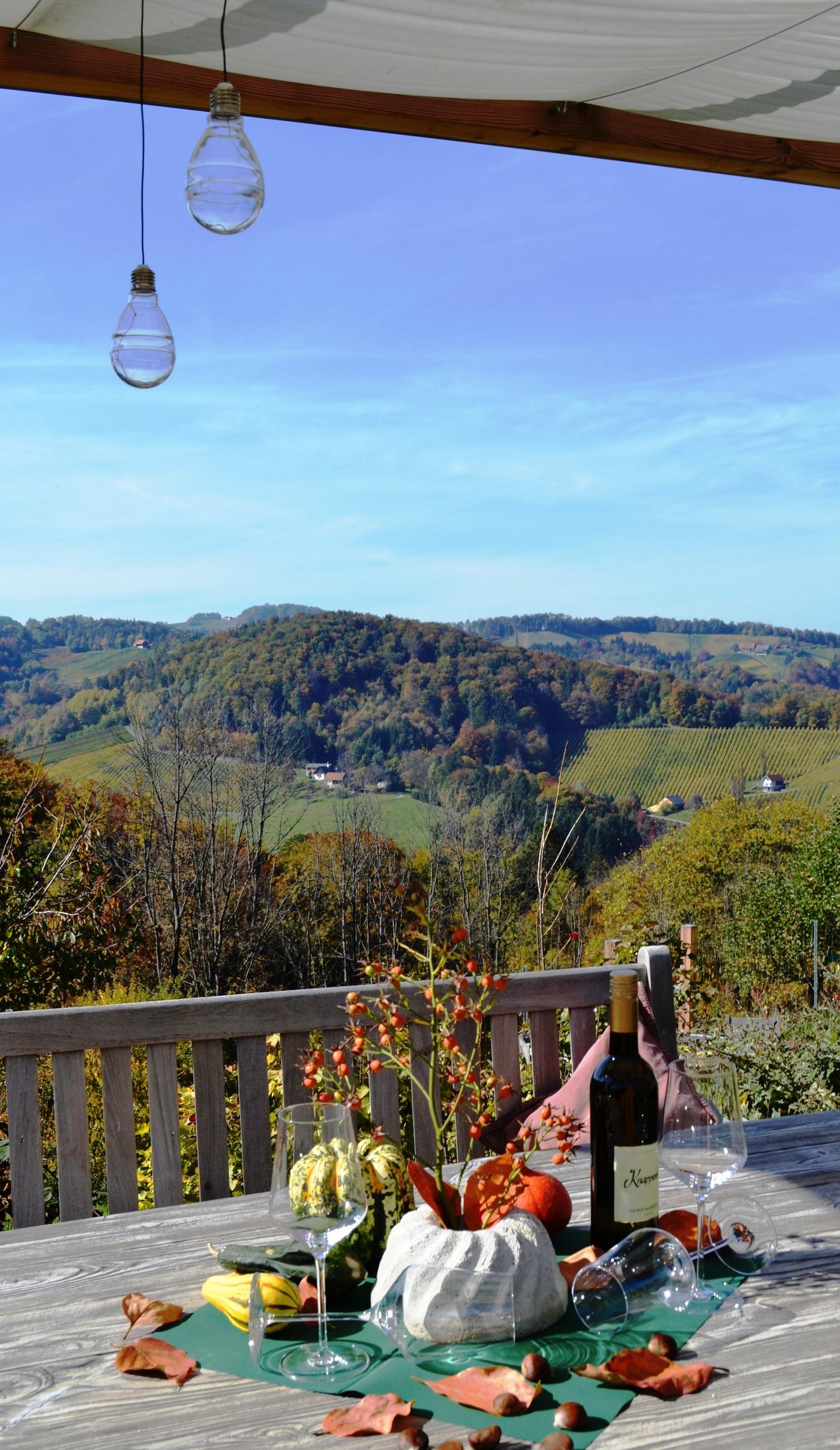 Aussicht Garten Ferienhaus Gamlitz Südsteiermark
