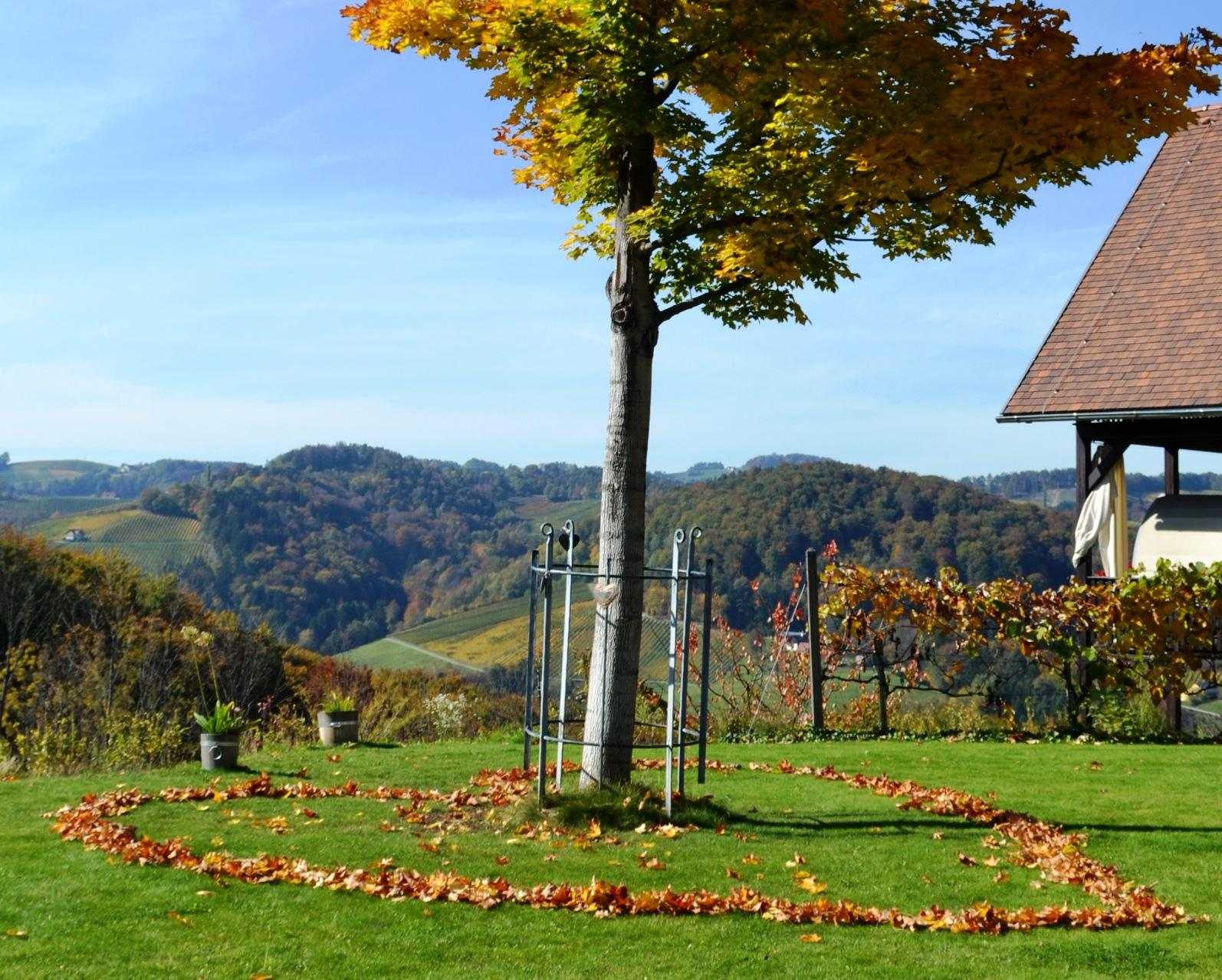 Herrliche Aussicht in die herbstlichen Weinberge der Südsteiermark