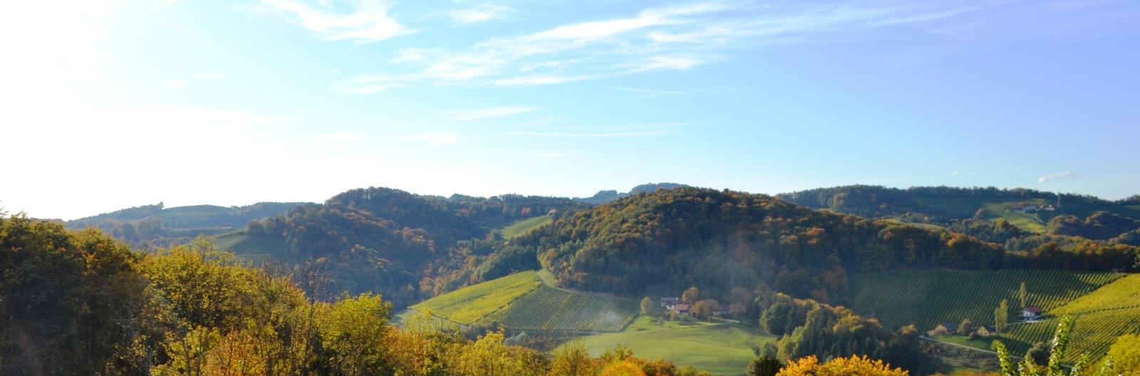 Panoramablick in die steirischen Weingärten